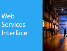 Web Services Interface